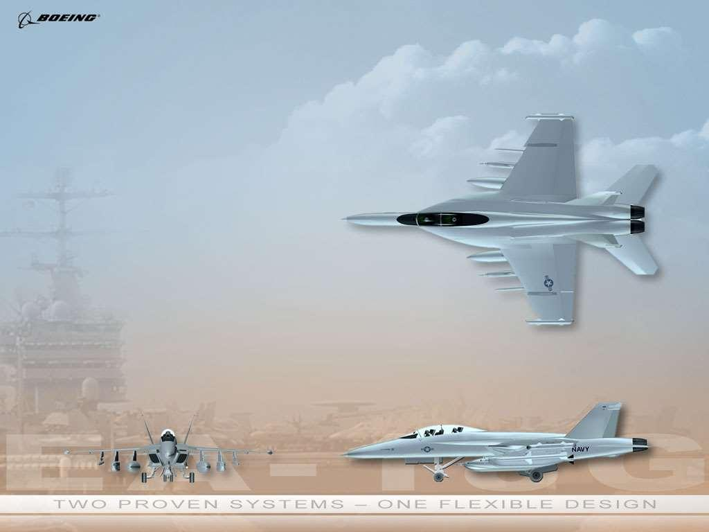 Dimensions and Weights EA-18G Increase over F Wing area 500 sq ft - Weight Empty Max TOGW Max carrier landing Propulsion *33,094lb 66,000 lb 47,000 48,000 lb 1,368 lb - 3,000 lb 23.