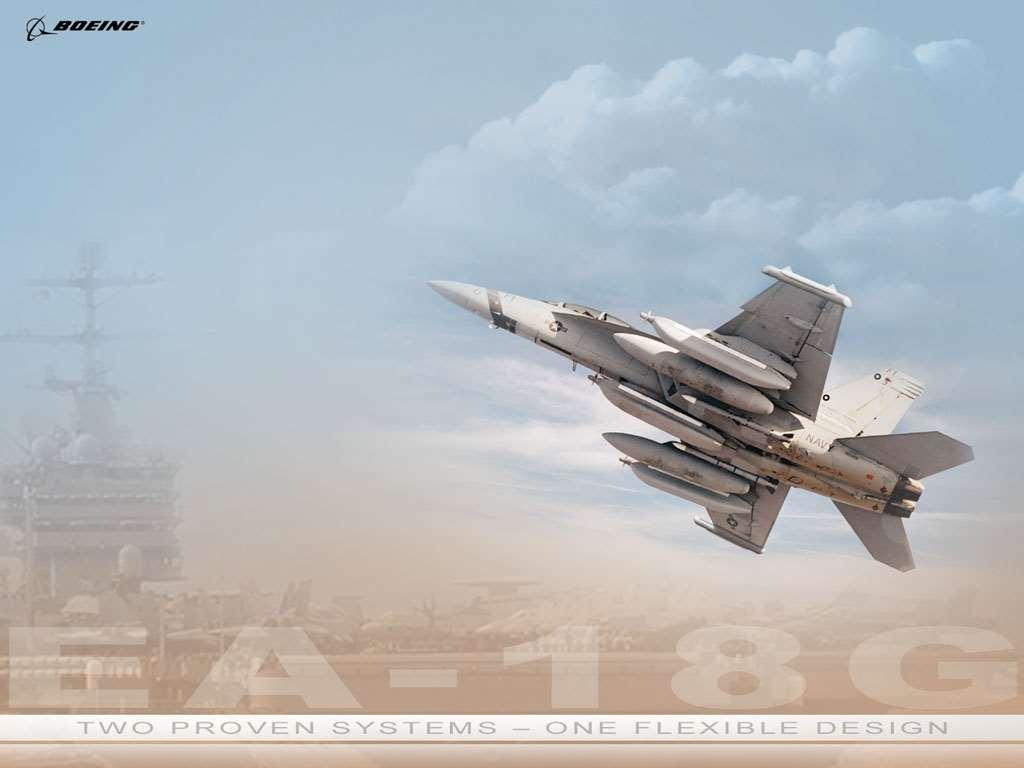 The EA-18G 2009 IOC Extensive E/F/G and ALQ-218 commonality More capability for the investment Leverages future upgrade and modernization