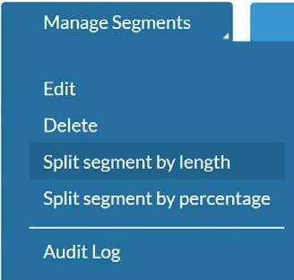 Now click on Manage Segments Split segment by length This is the box that comes