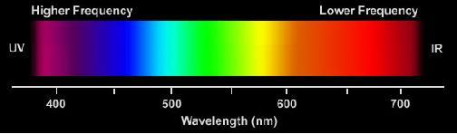 COLOR VISION Human visual system perceives the range of light wave frequencies as a smoothly varying rainbow of colors This range of light frequencies is the visual