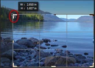 To flip a Canvas, navigate to the Image menu, choose Image Rotation and then choose either Flip Horizontal or Flip Vertical. Crop Tool (C) The Crop tool is used to remove an unwanted part of an image.