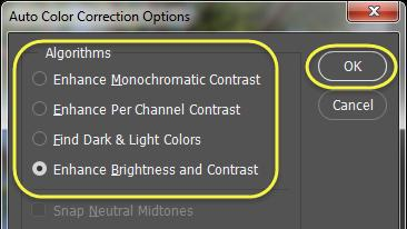 On the new adjustment layer, there is an Auto button, which will apply an auto color to the image, based on an algorithm that Photoshop uses in the background.