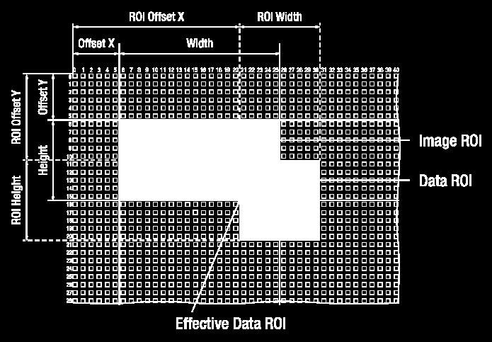 Only the pixel data from the area of overlap between the data ROI defined by your settings and the Image ROI