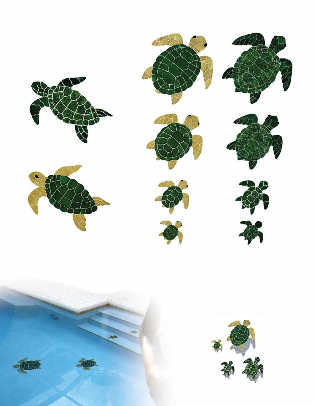 "Classic Turtles & Dolphins Turtle Sideview Green 19 "" x 24"" TURGRESL 13"" x 16"" TURGRESM 7"" x 9"" TURGRESS Turtle Sideview Natural 19 "" x 24"" TURNATSL 13"" x 16"" TURNATSM 7"" x 9"" TURNATSS Turtle Topview"