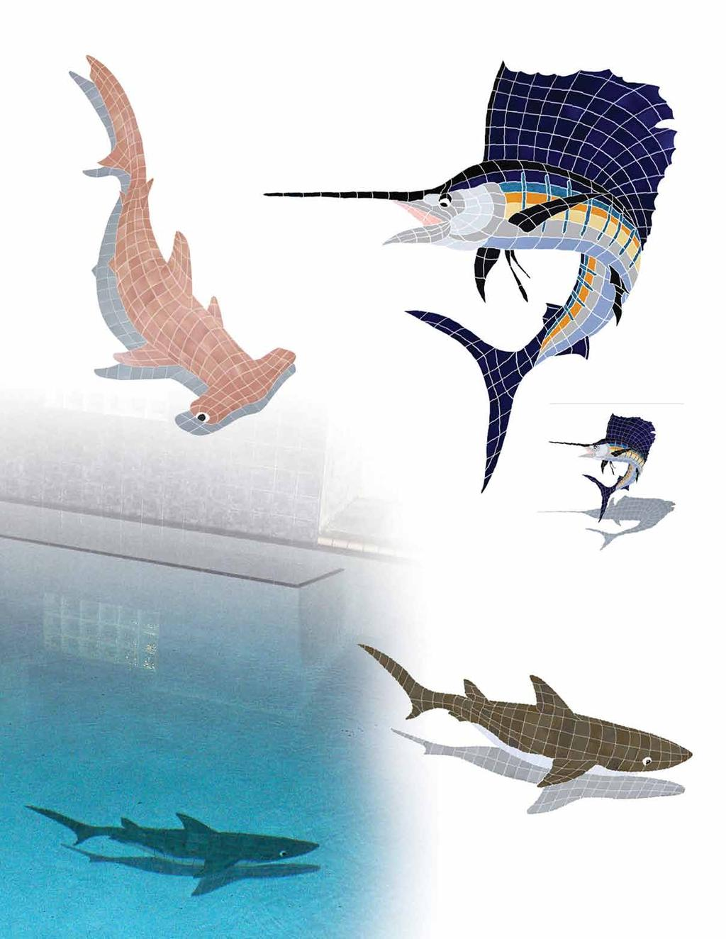 "Trophy Sailfish 53"" x 50"" STRMCOLL 62"" x 61"" shadow STSMCOLL Hammerhead Shark with"
