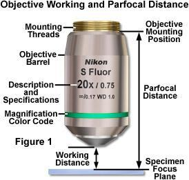 Working Distance In general, high NA lenses have short working distances However, extra-long working
