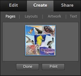 5. Click OK. Photoshop Elements creates the photo book and displays Pages, Layouts, Artwork, and Text tabs in the Create panel (Figure 3). 6.
