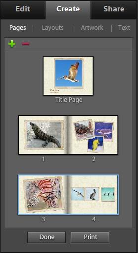 6. Click OK. Photoshop Elements creates the photo book and displays Pages, Layouts, Artwork, and Text tabs in the Create panel (Figure 8). 7.