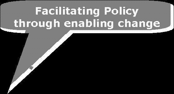 Policy Foresight process Actor Shared information as an input to decision making for