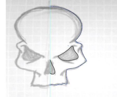 The illustration begins with a sketch with pencil and paper. Draw a centre line and pay close attention to the details of one side of the skull as this can be reflected in the digital stages.