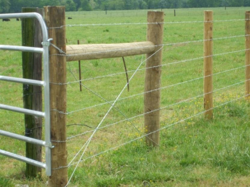 High Tensile Wire Fence This document is designed specifically to assist landowners interested in selfinstallation of the following types of fencing: energized high-tensile, non-energized high