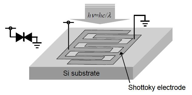 Structure of MSM Photodetector