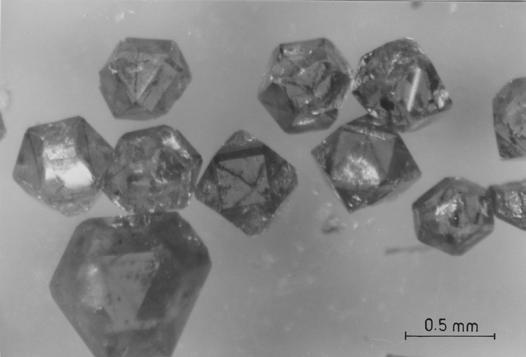 tests on glass, and in some cases even worse. Figure 6 shows details of a single diamond track in quartz, at two different magnifications.