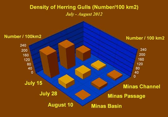 Marine Mammal and Seabird Survey 25 Minas Passage Tidal Energy Study Site, 2012 Abundance of Gulls Herring Gull Herring Gull has typically been the dominant seabird in terms of numbers in the vessel