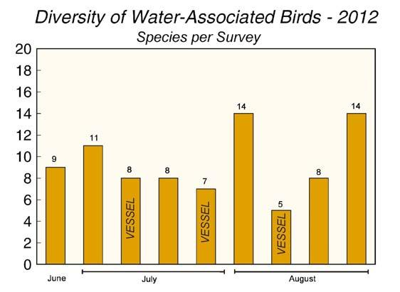 Marine Mammal and Seabird Surveys 37 Figure 27. Diversity of water-associated birds (number of seabird, waterfowl and shorebird species) on shorebased and vessel surveys, June-August, 2012.