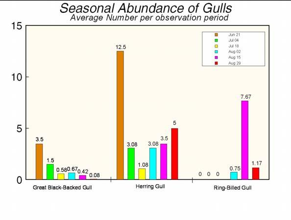 Marine Mammal and Seabird Survey 42 Figure 31. Abundance of gulls (average number per 30-minute observation period) at Fundy Tidal Energy Demonstration site, June, July & August 2012.