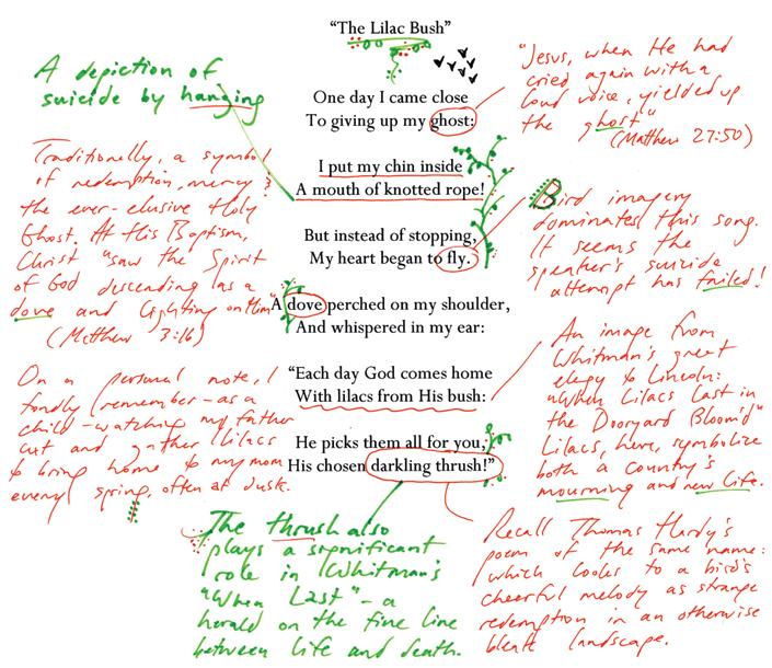 alumnicorner The Lilac Bush, annotated PJ Sauerteig 15 analyzes the literary references in a song from his latest album, The Ascension of Slow Dakota Performing under the name Slow Dakota, PJ