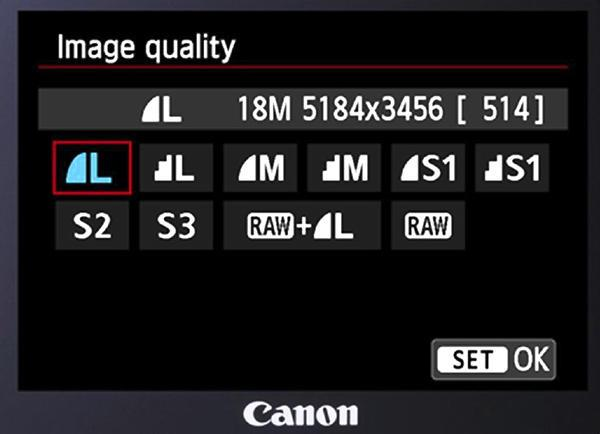 About your camera suggested settings Choose RAW or RAW + L This may be combined with the Image Quality Menu If your camera doesn t have