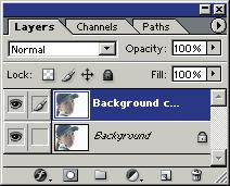 jpg Copy the Background layer by dragging it onto the Create a new layer button on the Layers palette.