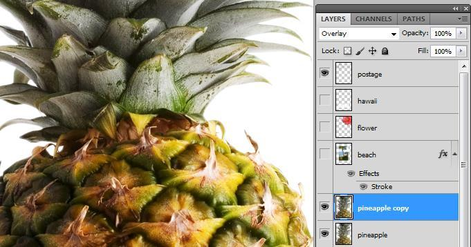 Click the eye icons next to the Hawaii, Flower, and Beach layers to hide them. 2. Right-click on the Pineapple layer and choose Duplicate Layer, then click OK.