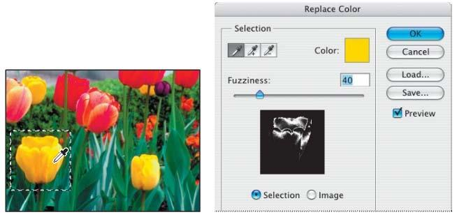 4. Use the eyedropper tool and click anywhere in the yellow tulip in the image window to sample that color. 5.
