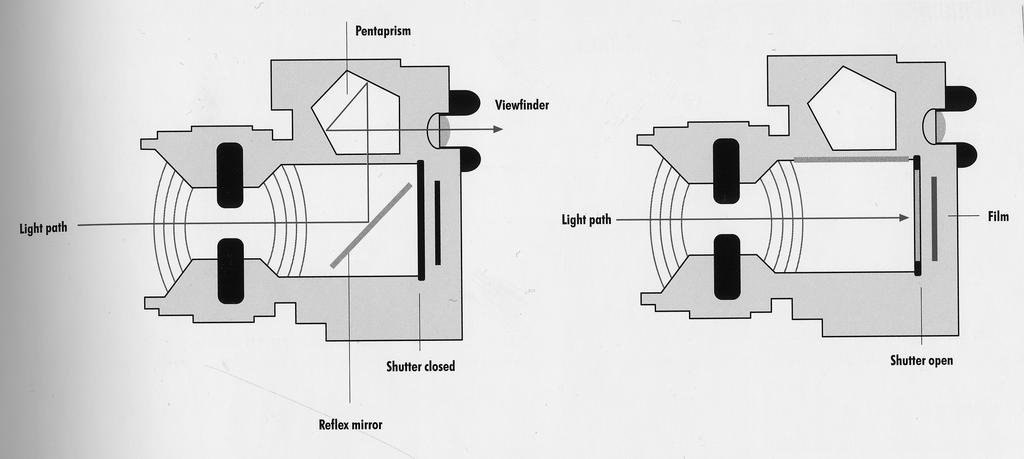 The SLR Camera Light travels through the lens and is bounced off the mirror into the pentaprism, which in turn bounces it through the viewfinder.
