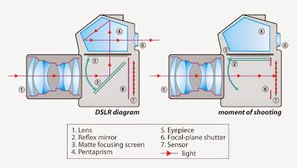 DSLR CAMERA DIAGRAM When shooting video the mirror flips up and stays up to allow light to continuously pass onto