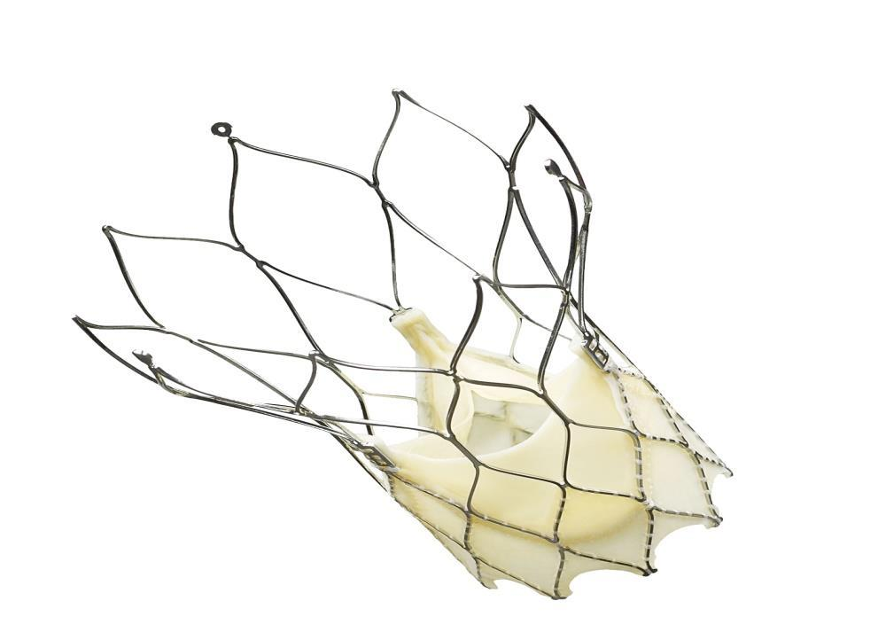 Global Transcatheter Aortic Valve Replacement (TAVR) Market: