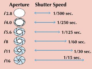 Aperture & Shutter Speed The aperture and shutter-speed combinations shown below allow the same amount of light to enter the