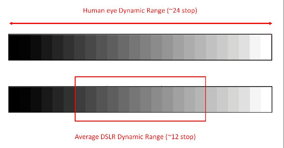 DYNAMIC RANGE Dynamic range is the difference between the darkest and brightest parts of the scene