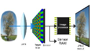 Image senor A semiconductor component, CCD or