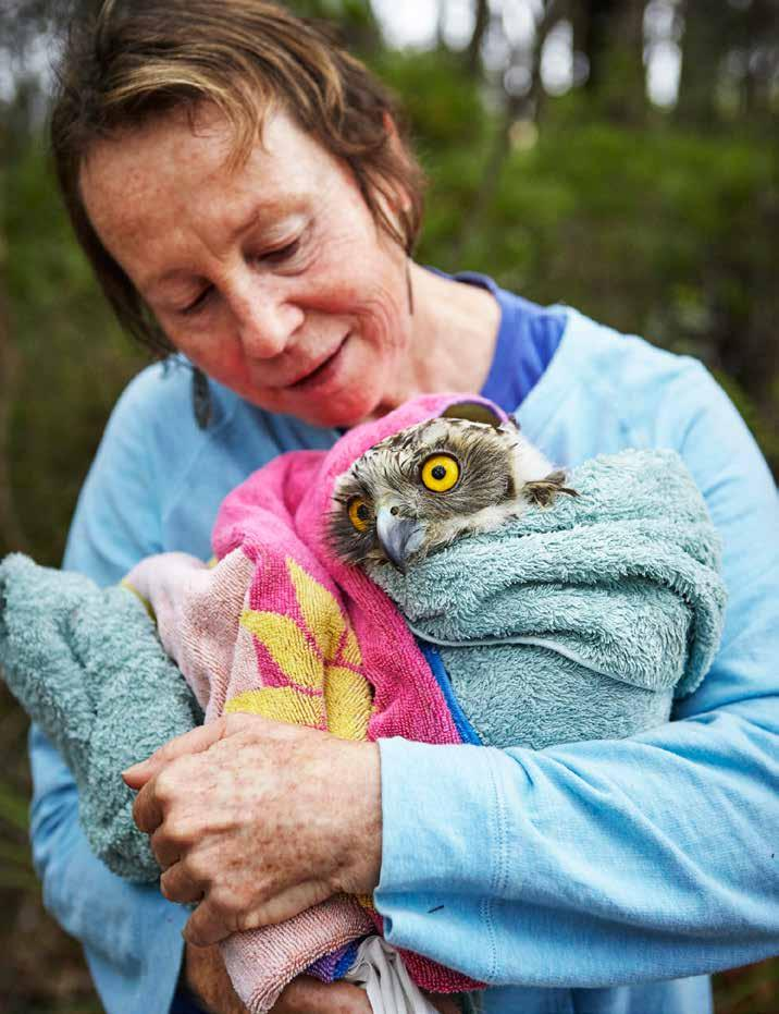 Birds come to Peggy s centre with a variety of injuries, but the source of this powerful owl s suffering was a mystery.