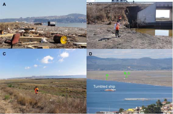Fig. 8 Ground photos in Talcahuano taken by the authors. Each point is identified in Fig. 7. A : Tsunami debris and drifted containers in the coastal marsh.
