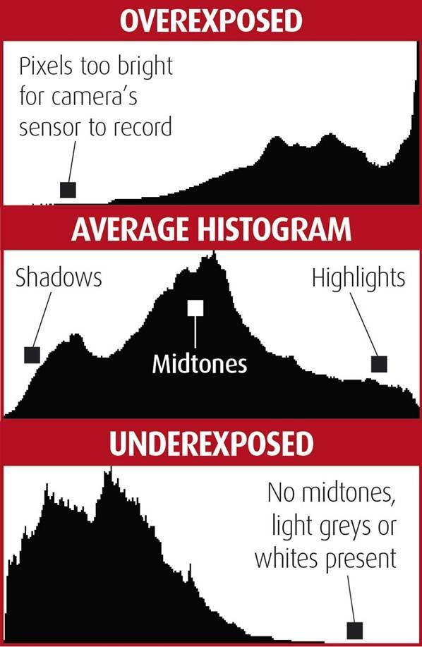 When you review an image that you have taken, you can push the Info button & after one or two presses you will see the histogram graph.