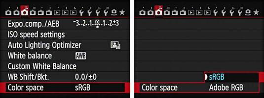 2. Colour Space. Colour spaces determine the range (gamut) of colours that are captured in an image. Cameras generally give you a choice of two colour spaces srgb & ARGB.