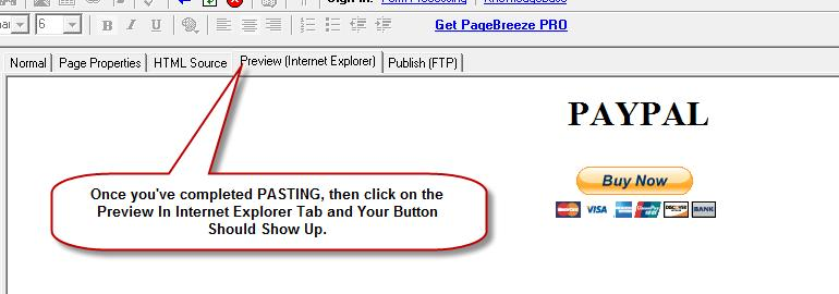 STEP 7: Once you've pasted the code click on the Preview (Internet Explorer) tab.