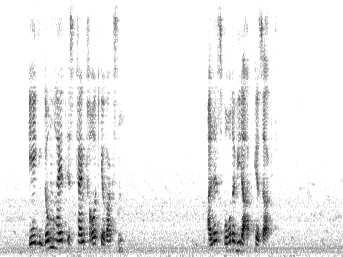 5: Spectrograms of the input and signals (car speed of 1km/h, α 1). We have shown theoretically that the proposed signal weighting is equivalent to maximum-ratio-combining.