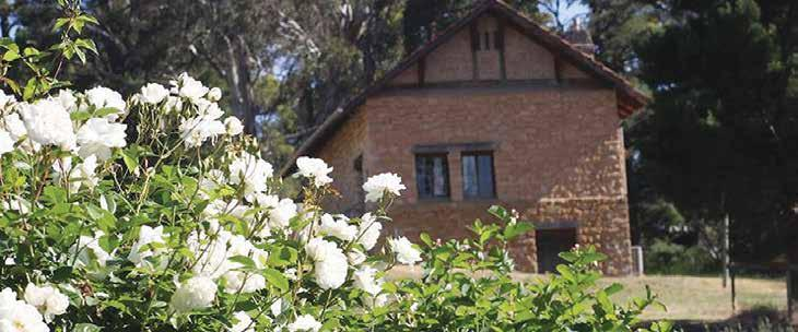 A rich heritage celebrating art and roses at The Cedars In the spring of 2015, a special and grand event and fundraiser was held in collaboration with Heritage Roses in Australia, which promoted and