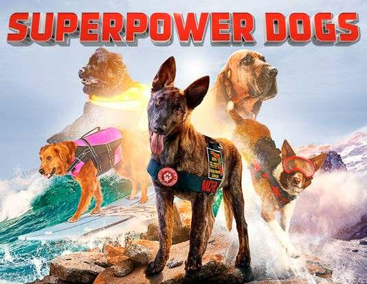 SuperPower Dogs By Taran Davies, George Duffield Halo, Disaster Response Dog Henry, Avalanche Rescue Dog Ages: 4 8 48 pp. Mar.