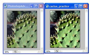 Figure 2-8: Before and after adjustment. 5. After completing the adjustment, close both files. The first tonal adjustment is complete for this image.