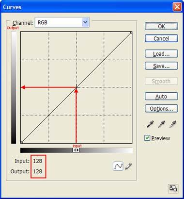 Figure 2-10: Detail of Curves dialog box.