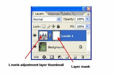 the complete image is selected. If you have an active selection when you create an adjustment layer, you'll see the selection in the layer mask icon.