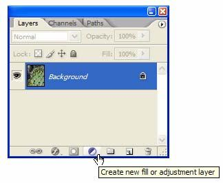 using Auto Levels from the Image menu. When you click the Options button, the Auto Color Corrections Options dialog box appears.