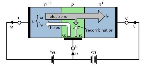 Bipolar Transistors Basic Construction NPN Transistor Conceptual construction N P N Emitter Collector Base-Emitter Forward Biased Base-Collector Reverse Biased Graphic courtesy of Wikipedia Base