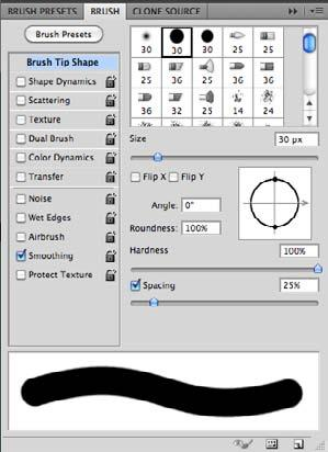 Brushes Panel Transfer Angle/Roundness Adjust these settings for more calligraphic strokes.