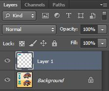 You will see 2 layers. The top layer will be a new layer you have just created (most likely called Layer 1). The other one will be your Background layer.