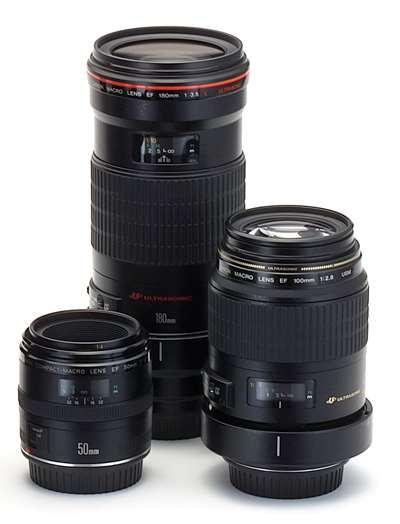 Lenses in Macro Photography Regular macro lenses Long lens barrel design (to extend the di) Macro lenses range from 50mm to 180mm Longer focal lengths allow greater working distance, are often more