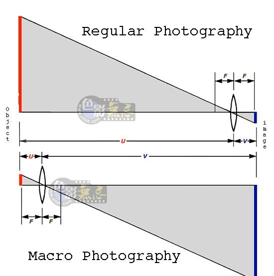 The Optics Two factors affect magnification: focal length and subject distance M= hi / ho = di / do the shorter do or longer