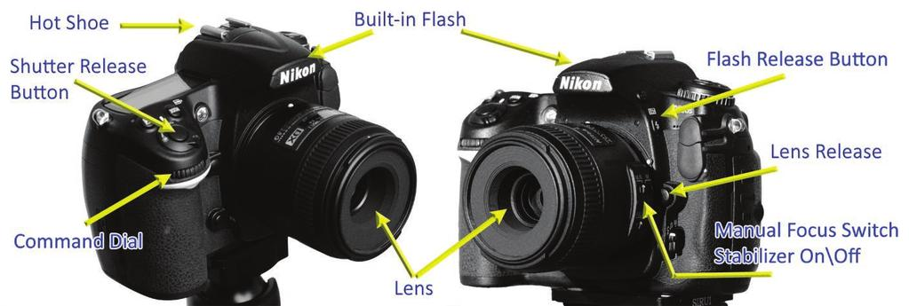 Fast auto focus provided by silent focusing motors and phase detect AF contribute to the SLR s responsive handling. Larger sensor sizes provide superior image quality and better low light capability.