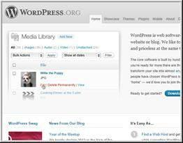 What is a WordPress Blog? WordPress is a content management software. It's a program that allows you to set up a website on the internet. Best part it's completely FREE!